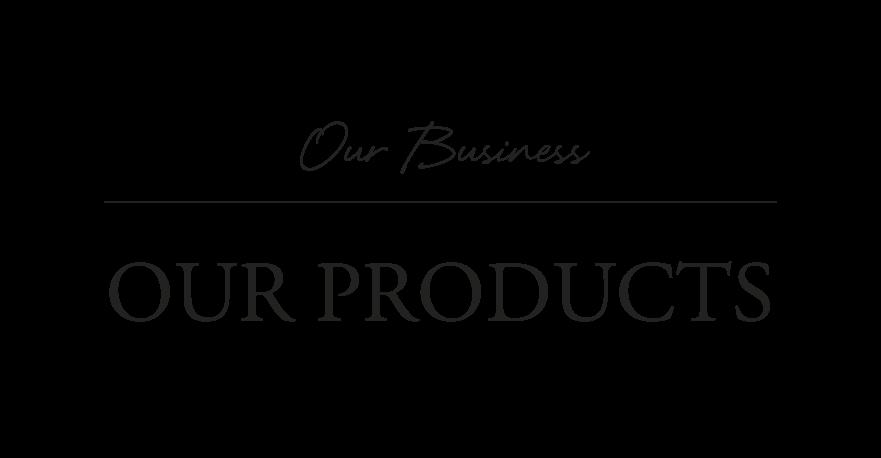 Nuestro negocio: nuestros productos